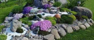 Альпийские горки с водопадом – пошаговое фото и ландшафтный дизайн своими руками