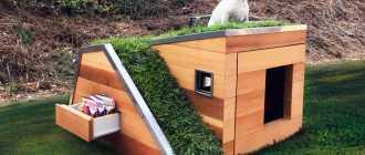 Будка для собаки своими руками: размеры, утепление