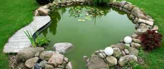 Как очистить пруд от ила и водорослей, аэратор для пруда своими руками