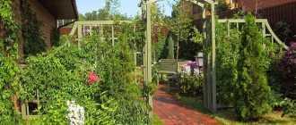 Арки садовые для вьющихся растений – фото, своими руками, чертежи и размеры