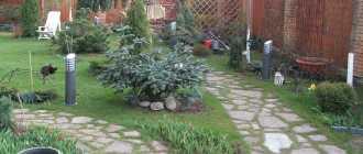 Садовые дорожки своими руками с малыми затратами на даче из подручных материалов, фото