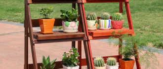 Напольная подставка для цветов: металлическая, деревянная, виды, конструкции, чертежи с размерами