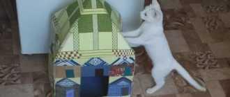 Как сшить домик для кошки своими руками по выкройке из ткани и поролона пошагово