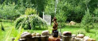 Фонтан своими руками – как сделать в саду, на даче, на участке у дома?