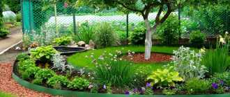 Бордюрная лента для грядок, сада, газона, клумбы