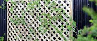 Шпалера своими руками – пошаговая инструкция, фото для вьющихся растений